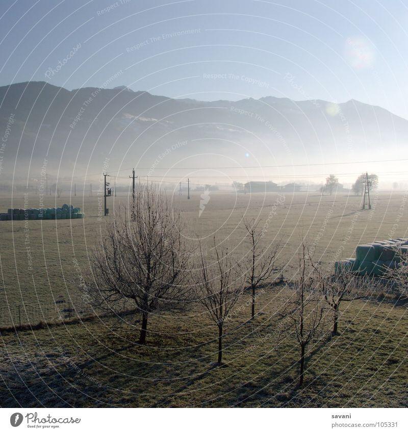 Nature Tree Sun Winter Calm Loneliness Cold Mountain Landscape Field Fog Frost Beautiful weather Electricity pylon Austria Valley