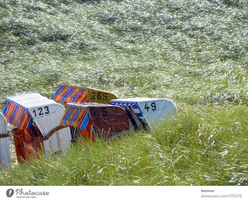 Green Summer Beach Grass Coast Wind Island Digits and numbers Beach dune Beach chair Amrum