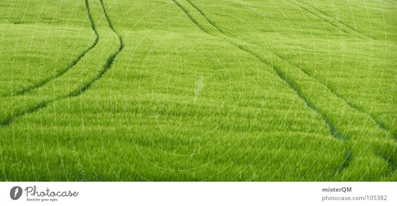 Green Loneliness Far-off places Grass Landscape 2 Field Healthy Germany Background picture Industry Growth USA Tracks Grain China