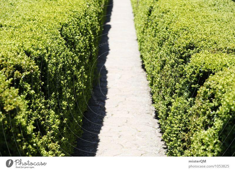Passage I Art Nature Garden Park Esthetic Symmetry Hedge Green Corridor Lanes & trails Colour photo Subdued colour Exterior shot Detail Experimental Abstract