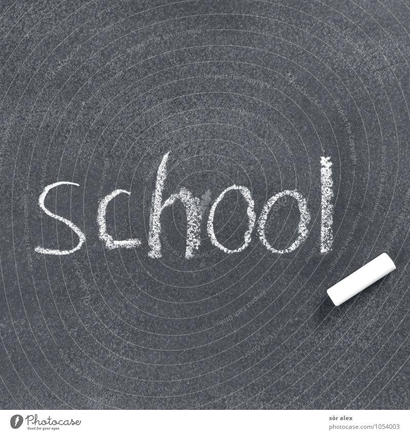 School Success Characters Study Sign Education Science & Research Student Blackboard Career Chalk Teacher Schoolchild