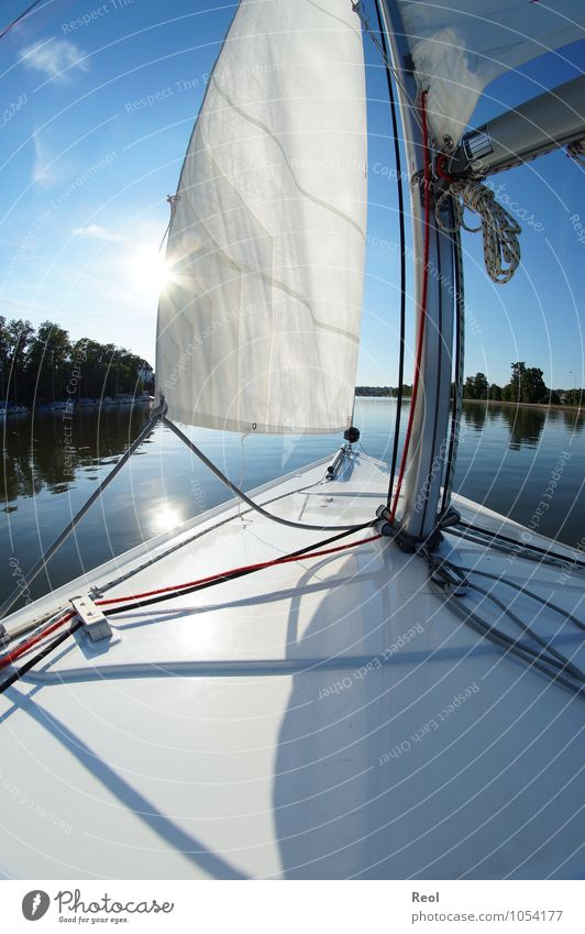 on the way Leisure and hobbies Sailing Sailboat Sailing ship Deck Navigation Watercraft Bow Cruise Cloudless sky Sun Summer Beautiful weather Mast Rigging Knot