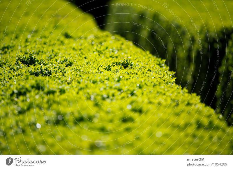 Passage III Art Esthetic Contentment Hedge Green Foliage plant Lanes & trails Horticulture Trimmed Garden festival Park Colour photo Subdued colour