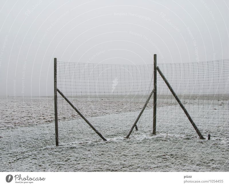 fence Nature Landscape Winter Bad weather Fog Ice Frost Snow Meadow Field Gray White Fence Fence post Barrier Wire netting fence Gloomy Far-off places Horizon