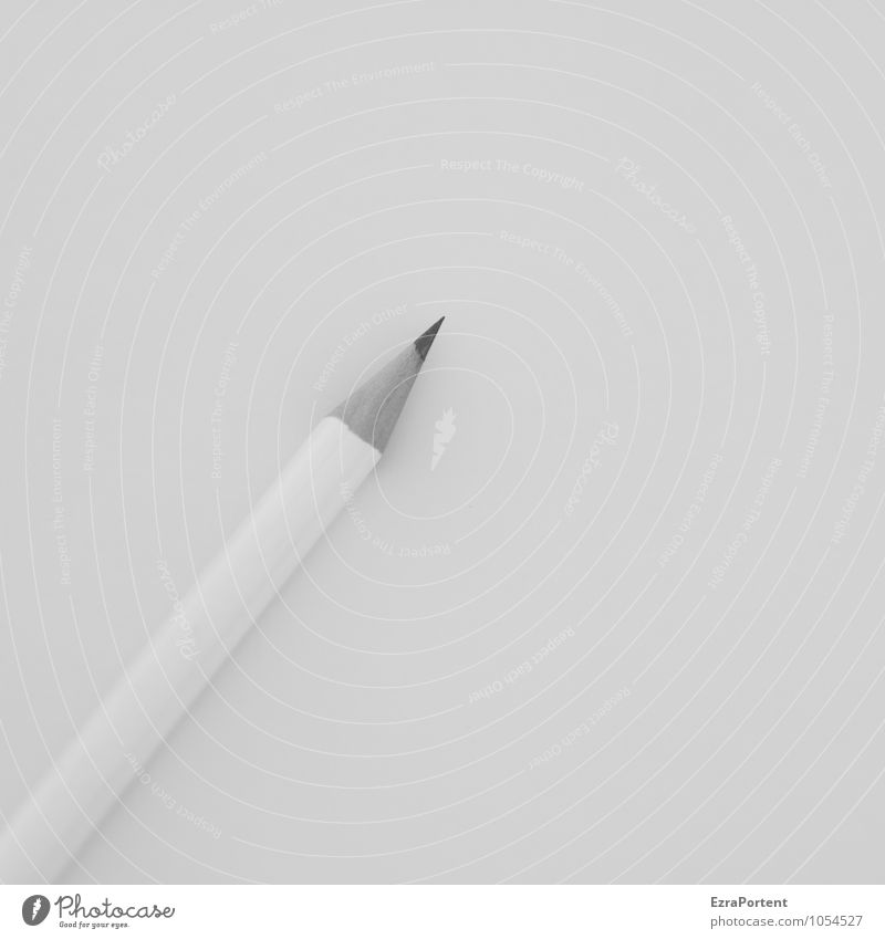/ Work and employment Office work Workplace Business Wood Line Lie Esthetic Gray Design Calm Pen Pencil Table Write Desk Draw Point White Creativity