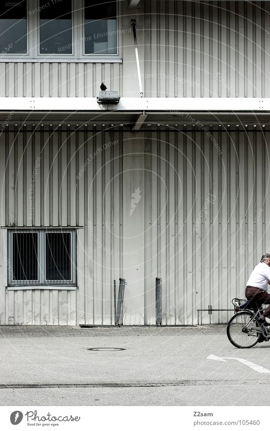 Nothing like home! Bicycle Driving Pigeon Minimal Window Tar Concrete Tin Corrugated sheet iron Closing time Man Masculine Shirt Vertical Simple Coil wire rope