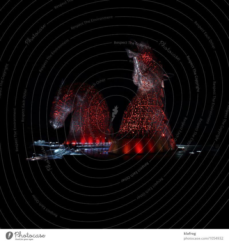 Sky Beautiful Water Red Calm Animal Black Swimming & Bathing Art Metal Glittering Dream Air Design Elegant Power