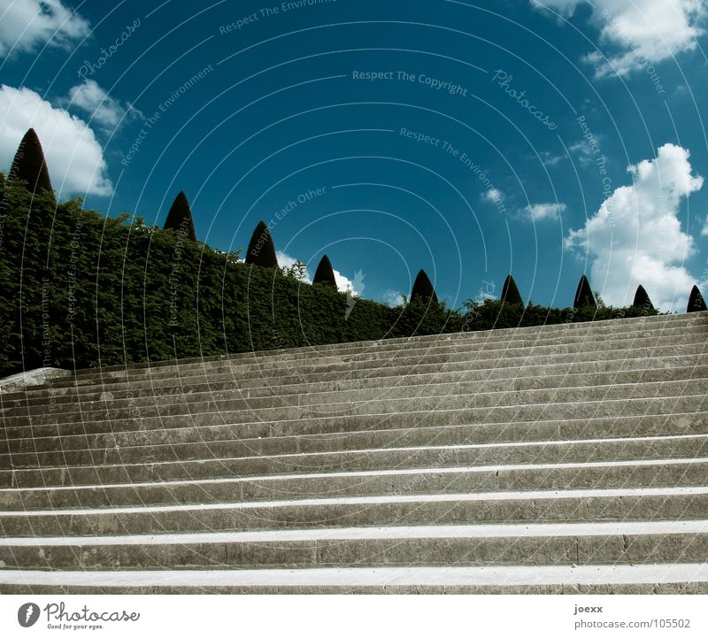 Sky Tree Clouds Garden Stone Park Stairs Bushes France Historic Go up Hedge Castle grounds