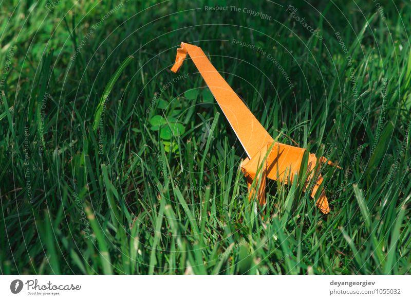 Origami orange color giraffe Design Joy Playing Vacation & Travel Tourism Safari Decoration Craft (trade) Art Zoo Nature Animal Park Meadow Paper Toys Natural