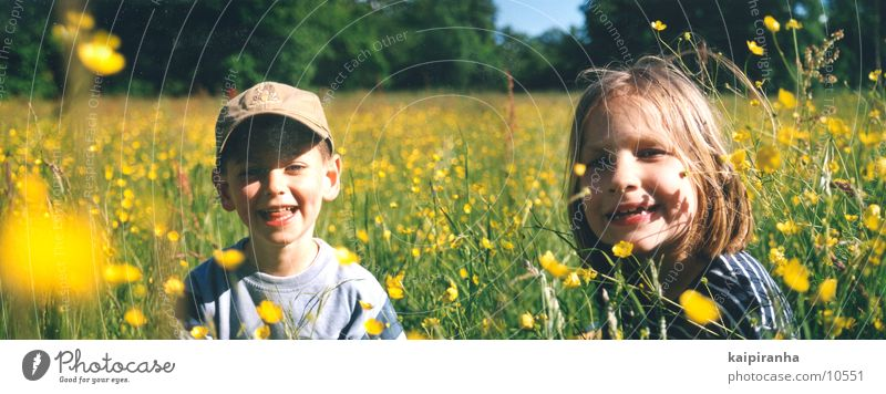 meadow children Meadow Green Child Flower Summer Panorama (View) Landscape format Girl Laughter Sun Joy Boy (child) 5 years Large Panorama (Format)