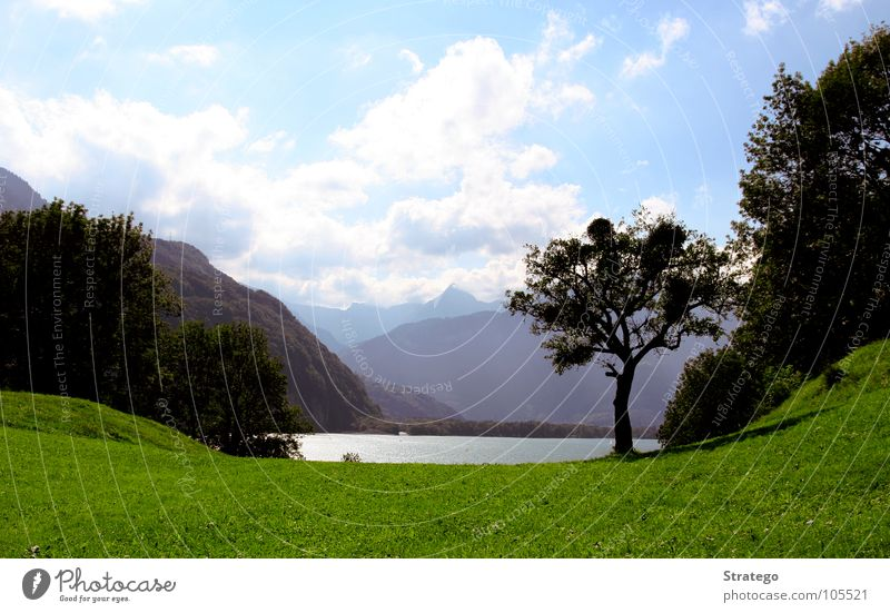 Sky Blue Green Water Sun Tree Relaxation Calm Clouds Joy Far-off places Forest Mountain Meadow Grass Freedom