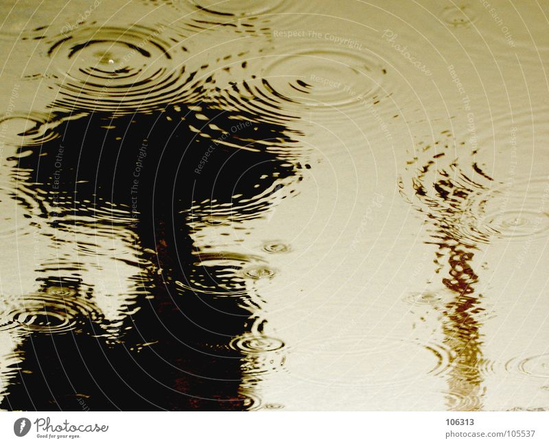 THE LAND OF THE LOST Waves Human being Drops of water Bad weather Rain Umbrella Wet Black Puddle Surface of water Water reflection Anonymous Damp Unclear