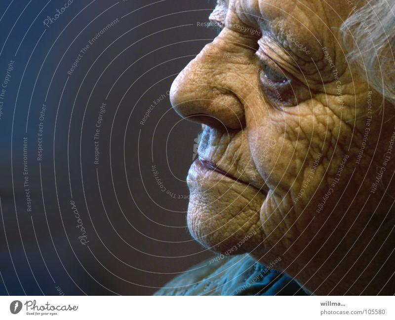 white-haired senior with many wrinkles remembers Woman Senior citizen Retirement age Human being Female senior Grandmother Head Face Old Wisdom Experience Age