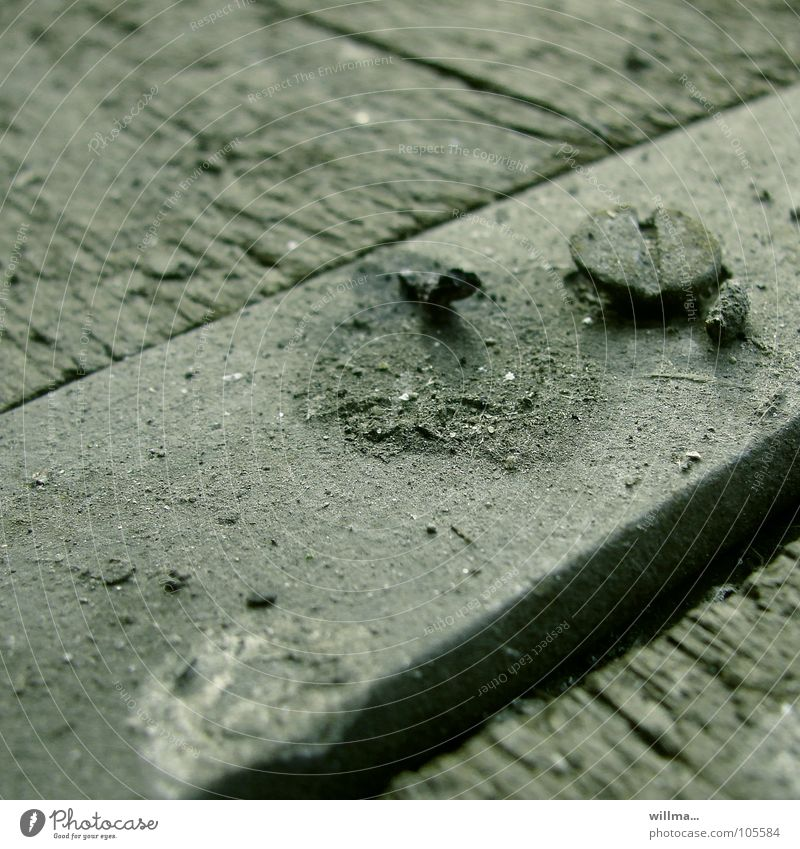 crappy Concrete Wood Old Dirty Dark Gloomy Gray Loneliness Decline Screw Pigeon droppings Diagonal screw loose pinned down Wooden board Subdued colour