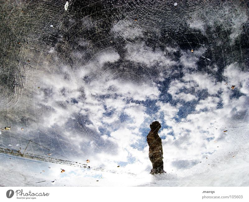 A thought Colour photo Exterior shot Experimental Abstract Copy Space left Copy Space top Silhouette Reflection Worm's-eye view Human being 1 Water Sky Clouds