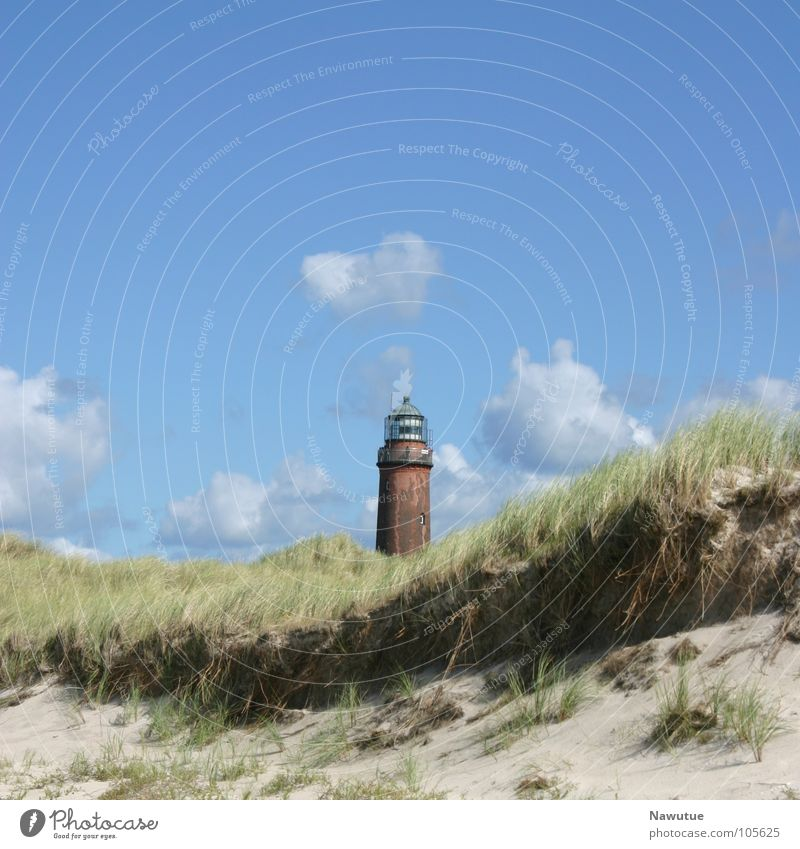 Nature Summer Beach Coast Beach dune Lighthouse Baltic Sea Darss Prerow Western Beach Fischland