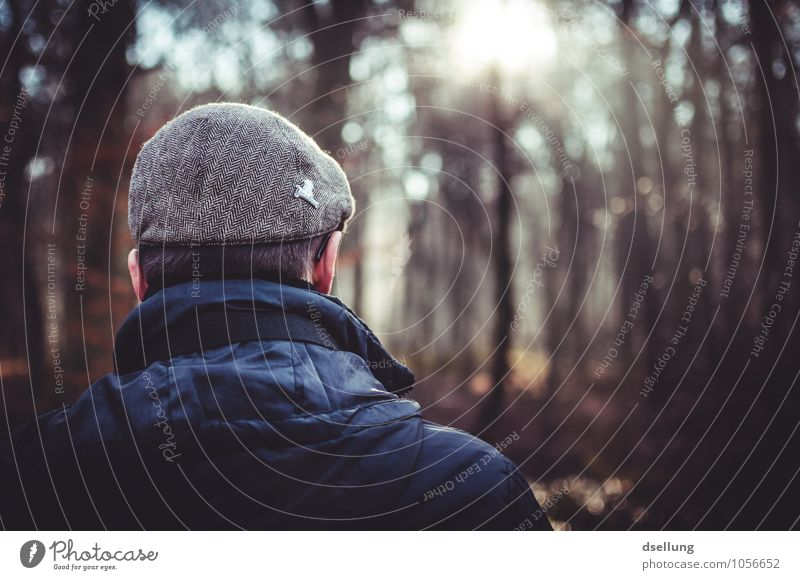 Back of a man looking into the forest and enjoying the sun Lifestyle Human being Masculine Man Adults Head 1 18 - 30 years Youth (Young adults) Forest Jacket