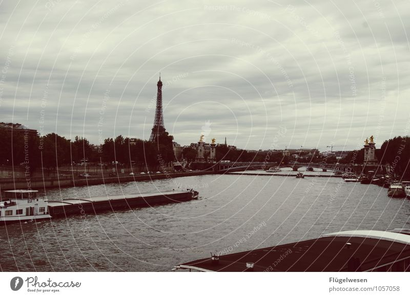 Paris Views 3 Vacation & Travel Tourism Sightseeing City trip River Capital city Downtown Skyline Overpopulated Harbour Building Architecture Tourist Attraction