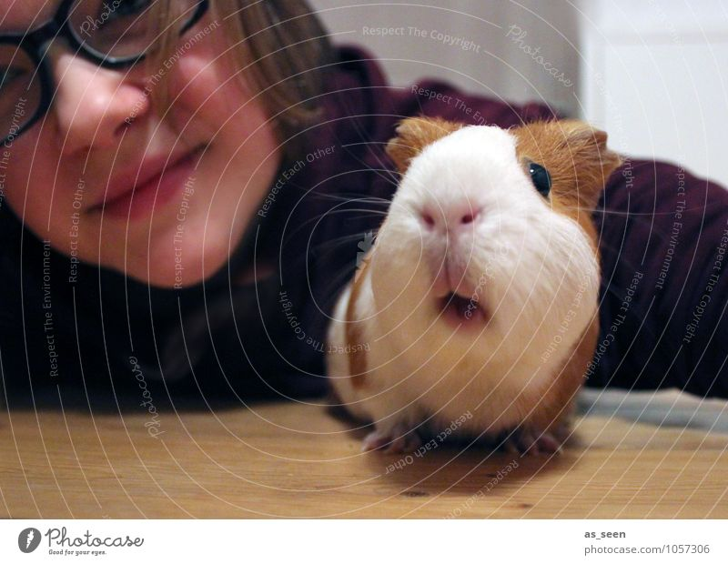 First let´s take a selfie! Girl 1 Human being 8 - 13 years Child Infancy 13 - 18 years Youth (Young adults) Animal Pet Animal face Zoo Petting zoo Guinea pig