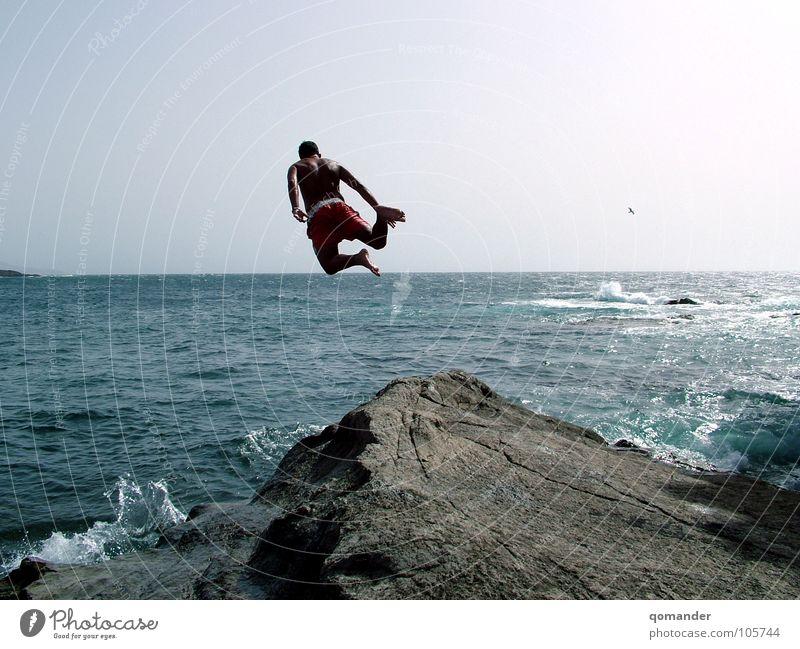 Sky Ocean Blue Jump Stone Power Bird Waves Horizon Force Surf Aquatics Cliff