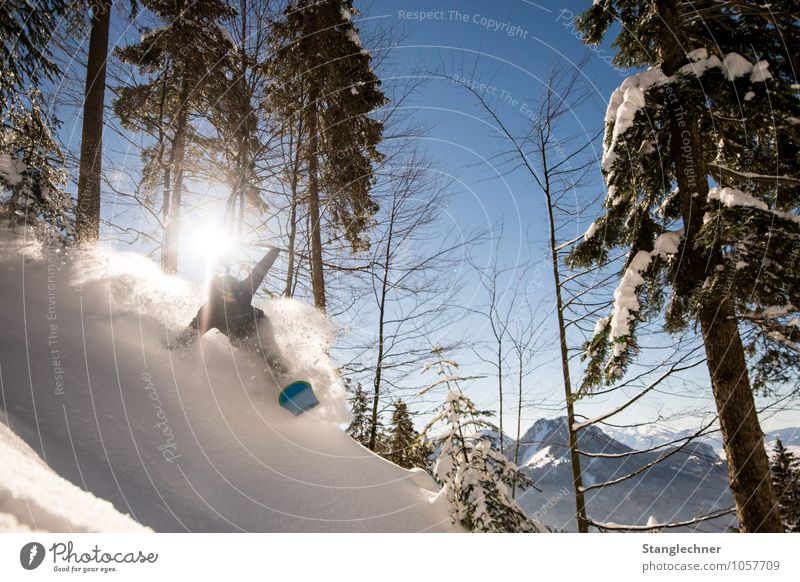Powder run Sports Winter sports Sportsperson Snowboard Freestyle Masculine 1 Human being Environment Nature Sky Sun Sunlight Plant Tree Mountain Peak