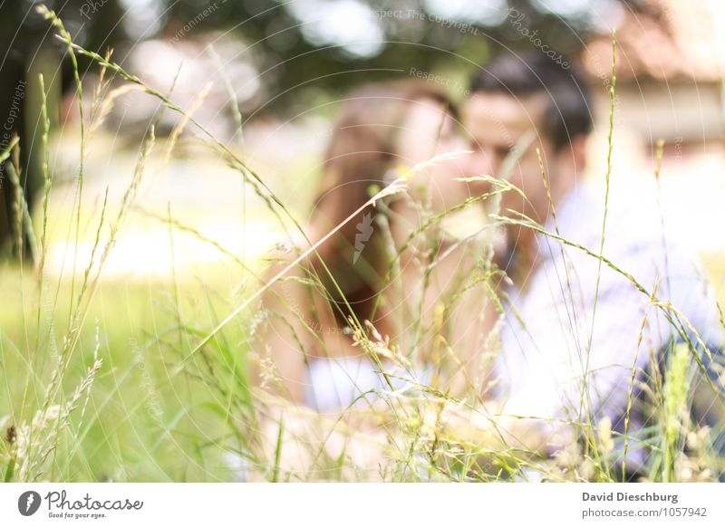 Human being Woman Nature Youth (Young adults) Man Summer Young woman Joy Young man 18 - 30 years Adults Meadow Love Feminine Spring Happy