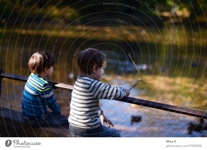autumn day Human being Child Toddler Brothers and sisters Friendship 3 - 8 years Infancy Autumn Park Pond Lake Autumnal Colour photo Exterior shot