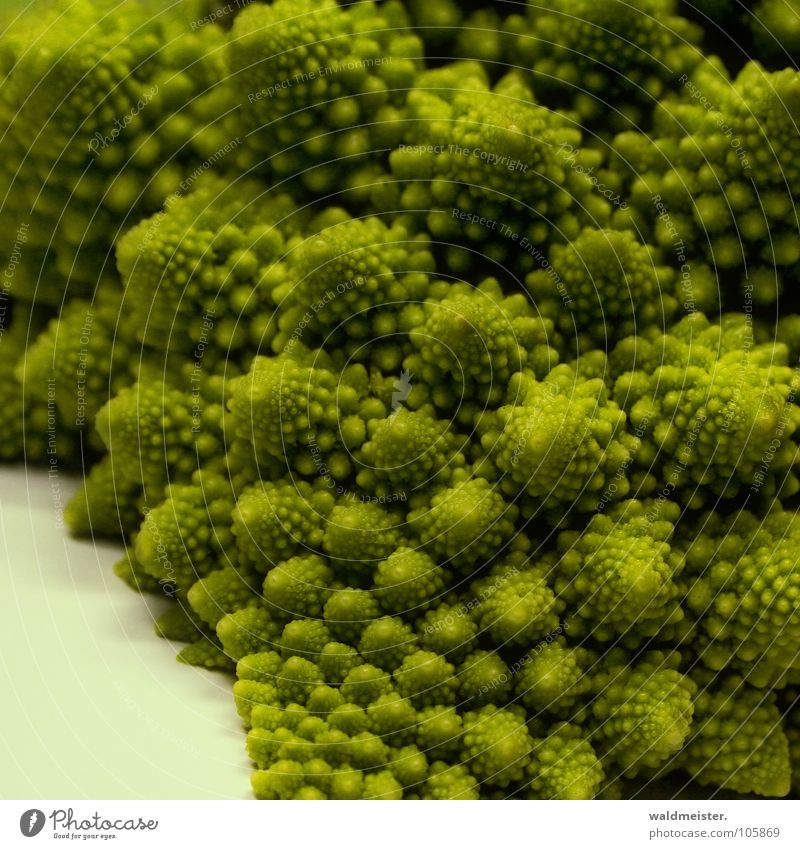 Fractal vegetables Cauliflower Broccoli Vegetable Chaos Spiral Healthy Structures and shapes Vegetarian diet Vitamin Green Romanesco Romanescu