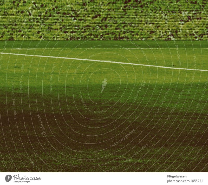 Environment Meadow Grass Sports Success Walking Soccer Sports team Ball Grass surface Double exposure Sporting event Sportsperson Fight Foliage plant Stadium