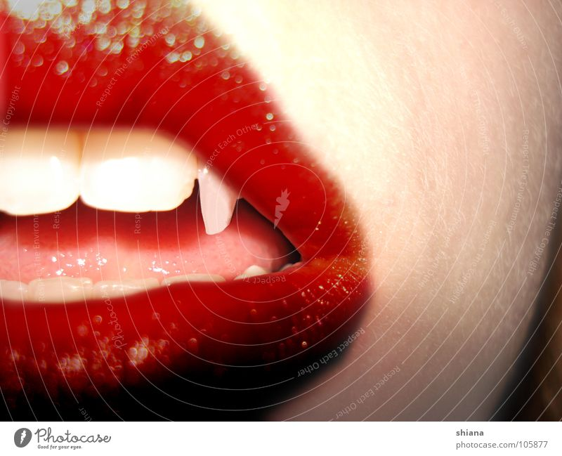 Woman White Red Mouth Skin Dangerous Teeth Lips Point Blood Tongue Alluring Vampire