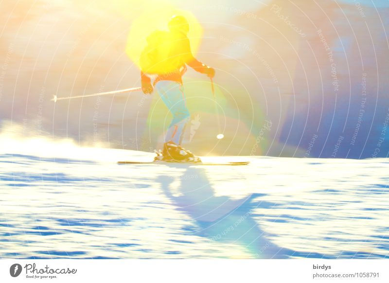 Human being Youth (Young adults) Relaxation Joy 18 - 30 years Winter Adults Snow Sports Exceptional Bright Leisure and hobbies Elegant Tourism Speed