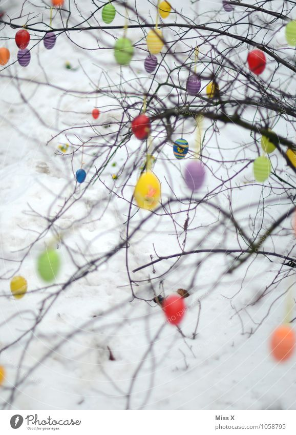 Many eggs Decoration Easter Sky Spring Tree Hang Multicoloured Easter egg Bushes Branch Twig Twigs and branches Colour photo Pattern Deserted Copy Space bottom