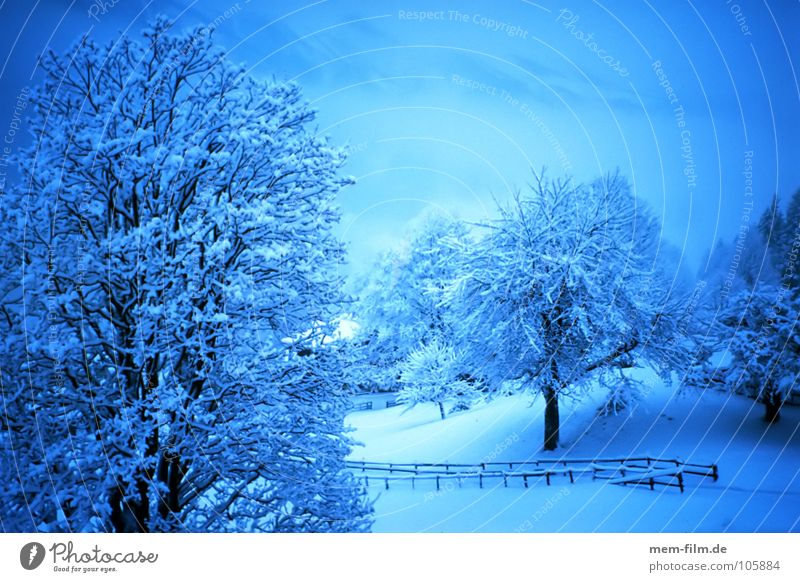 blue hour in white Snowscape Winter Cold Express train Virgin snow December January wise Ice Part Climate change Mountain Alps Twilight