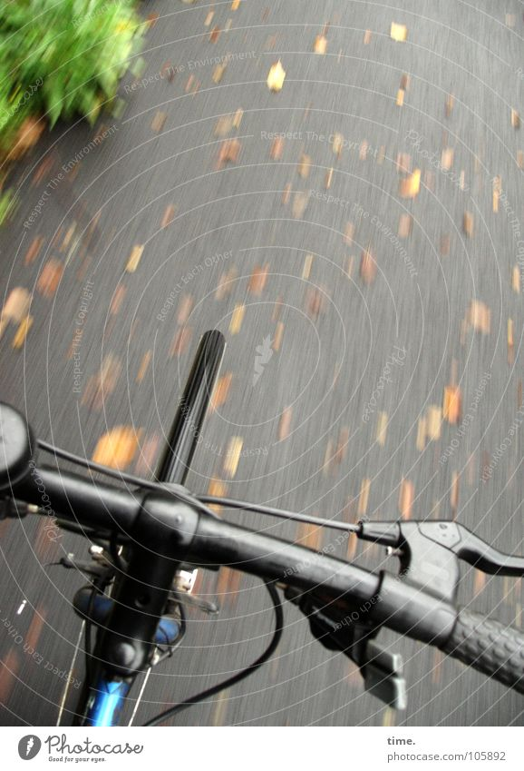 Autumn Playing Lanes & trails Movement Healthy Bicycle Trip Speed Driving Asphalt Cap Wheel Cycling Means of transport Brakes Bicycle handlebars