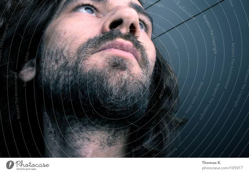 Bad Hair Day (beard & trunk version) Coati Under Bushy Wool Facial hair Portrait photograph Self portrait Gullet Brainless Skylight Strange Short-circuit