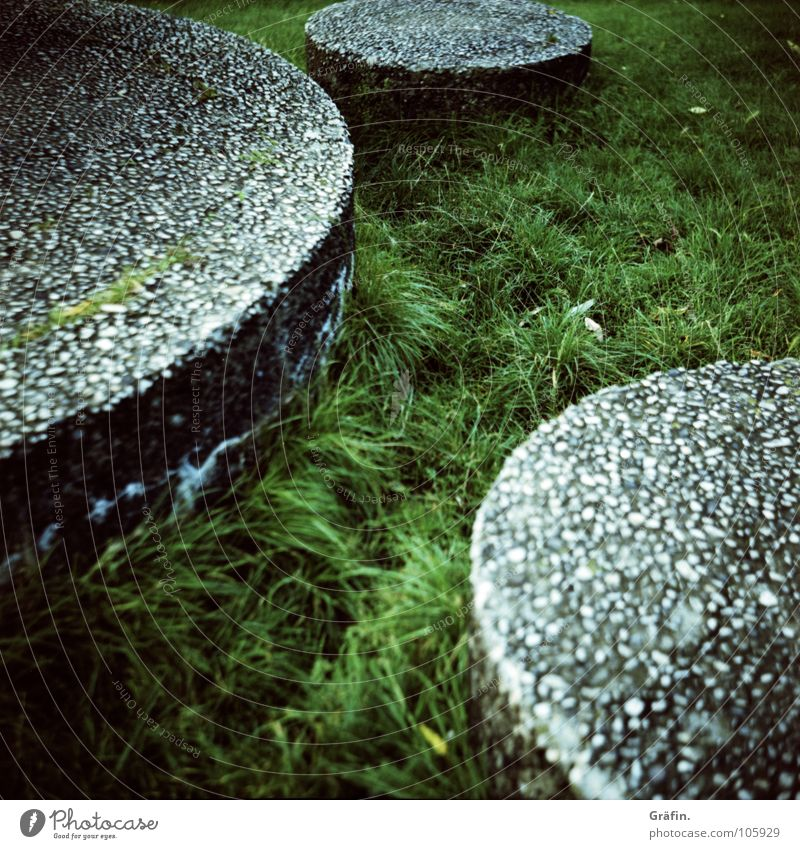 Green Meadow Garden Grass Gray Park Art Concrete 3 Circle Lawn Point Medium format Alster Cross processing Stone slab