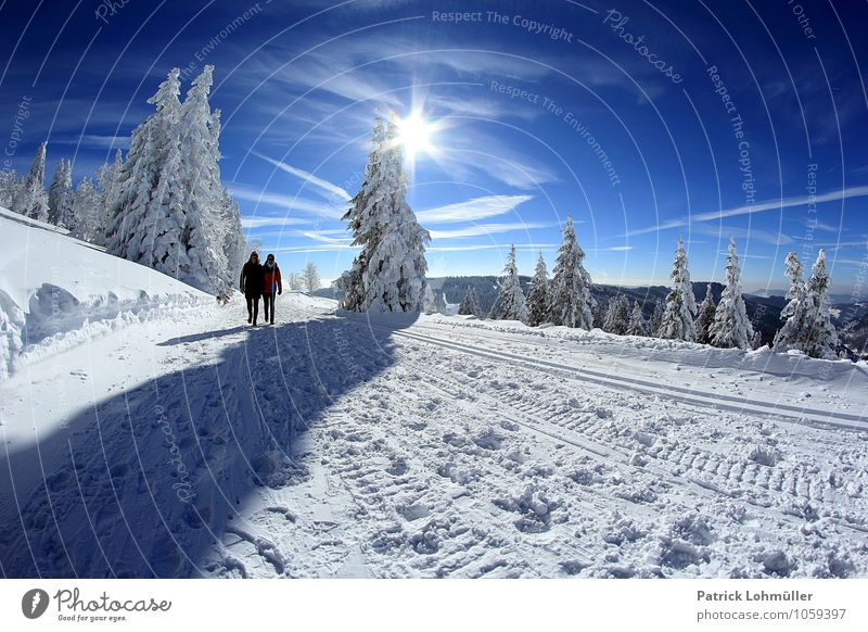 Human being Sky Nature Vacation & Travel Youth (Young adults) Sun Relaxation Landscape 18 - 30 years Winter Forest Adults Mountain Snow Feminine Lanes & trails