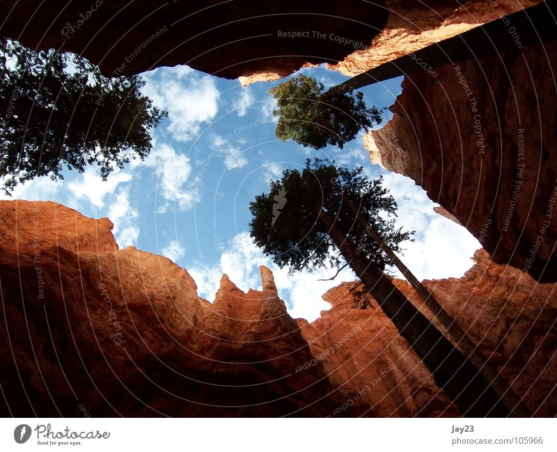 Sky Nature Tree Red Vacation & Travel Forest Mountain Stone Trip USA Discover Past Vantage point Americas Events National Park