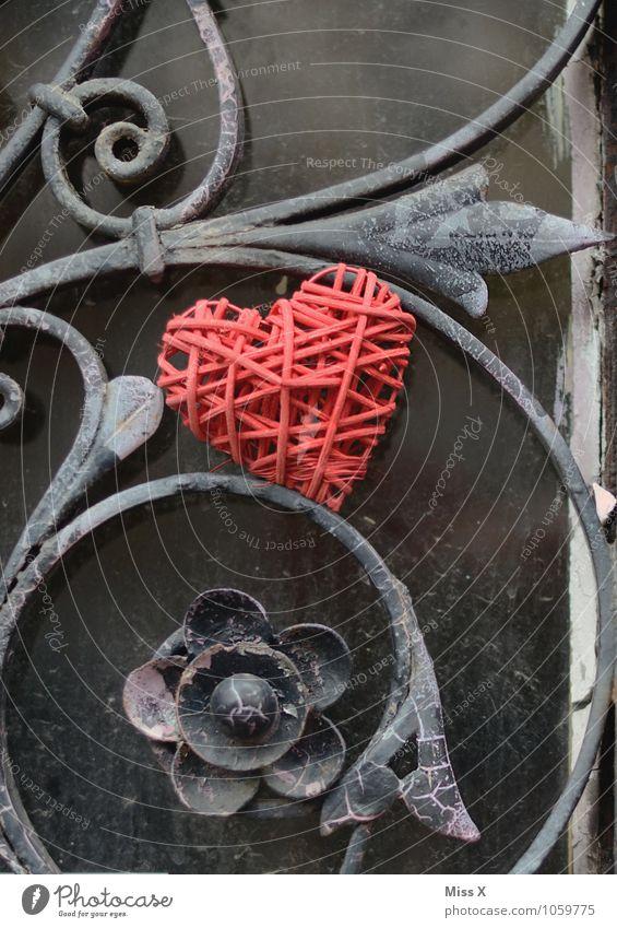 iron heart Flirt Valentine's Day Flower Door Metal Heart Emotions Moody Love Infatuation Romance Lovesickness Wrought iron Fence Tendril Gate Wrought ironwork