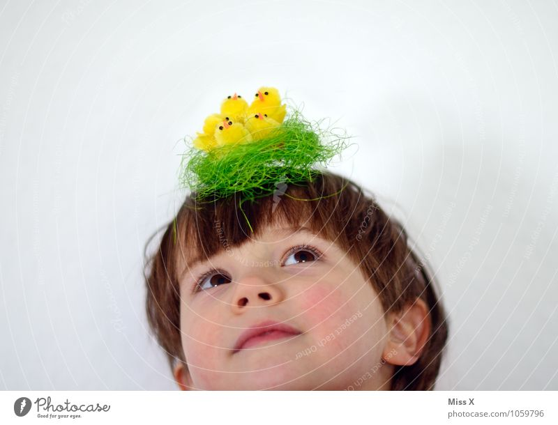 Human being Child Baby animal Emotions Funny Boy (child) Moody Bird Head Decoration Infancy Group of animals Easter Hat Toddler Nest