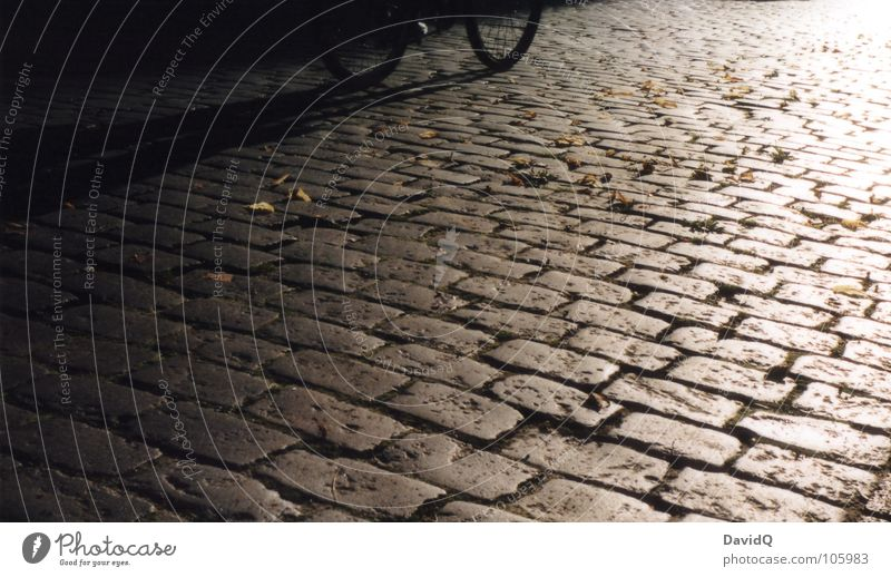 cobblestone wheeler Cobblestones Asphalt Cycle path Harrowing Shake Bicycle Sun Sunset White Gray Black Analog Home Closing time Light Traffic infrastructure