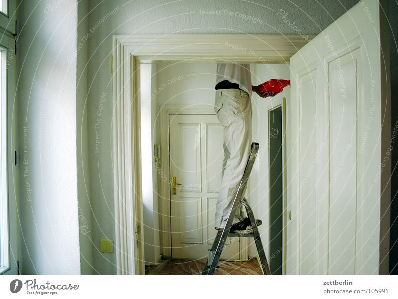 renovation Redecorate Wall (building) White Wisdom Stepladder Household Window Hallway Passage Work and employment Human being Living or residing paint Painter