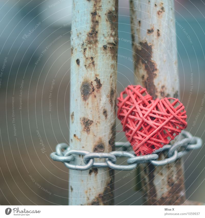 Closed Decoration Metal Heart Old Firm Emotions Moody Love Infatuation Loyalty Lovesickness Heartless Chain Cruel forbidden love Bans No admittance Fence