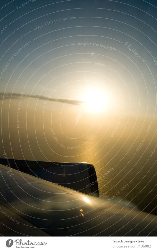 Sky Vacation & Travel Sun Flying Airplane Aviation Wing Flashy Engines Luminosity View from the airplane