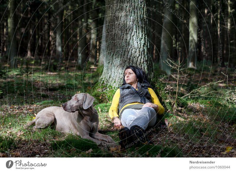 Dog Human being Woman Nature Summer Tree Relaxation Calm Animal Forest Adults Feminine Lifestyle Together Friendship Lie