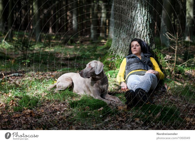 Watch out.... Lifestyle Senses Relaxation Calm Leisure and hobbies Human being Woman Adults Nature Tree Forest Black-haired Long-haired Animal Pet Dog Sit