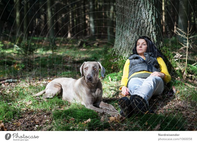 Dog Human being Woman Tree Relaxation Calm Animal Forest Adults Life Feminine Together Friendship Contentment Hiking Trip