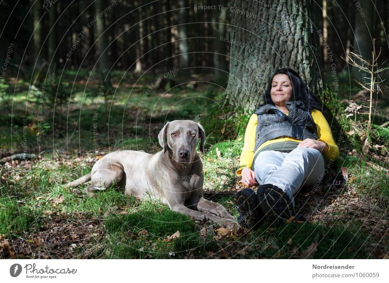 Dog Human being Woman Nature Tree Relaxation Calm Animal Forest Adults Feminine Friendship Lie Leisure and hobbies Idyll Contentment