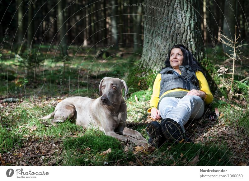 Human being Woman Dog Nature Summer Tree Relaxation Landscape Calm Animal Forest Adults Feminine Leisure and hobbies Hiking Happiness