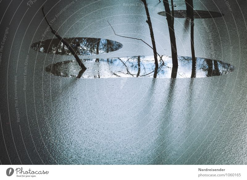 Nature Blue Plant Water Tree Landscape Calm Winter Dark Cold Lake Ice Weather Climate Frost Firm